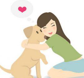 Hyvinvointia koirallesi ja itsellesi
