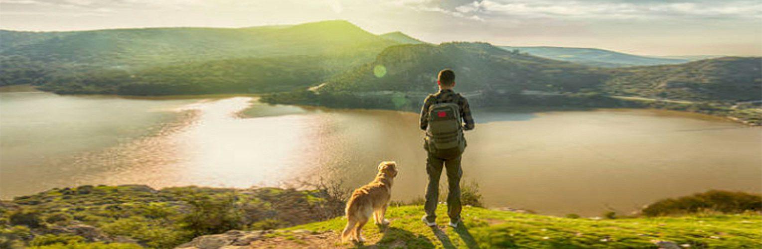 Kivutonta liikkumista koirallesi ja itsellesi